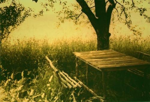 Stól, wieś koło Zagrzebia #trawa #drzewo #stół