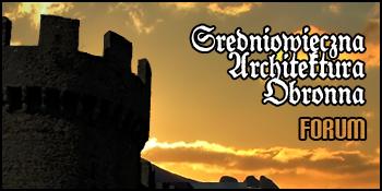 Forum Zamki, dwory obronne, mury miejskie, grodziska Strona Główna