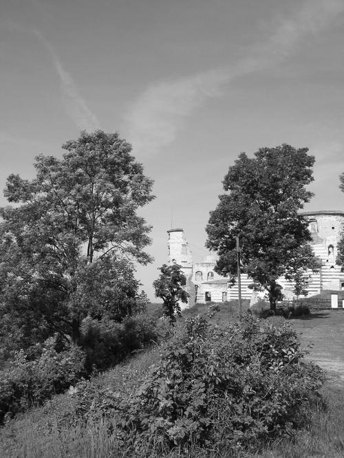 #drzewa #Janowiec #ruiny #wieża #zamczysko #zamek #ZamekWJanowcu