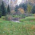 Mostek nad oczkiem wodnym w Ogrodzie Dendrologicznym w Glinnej. #mostek #woda #jesień #przyroda #OgródDendrologiczny