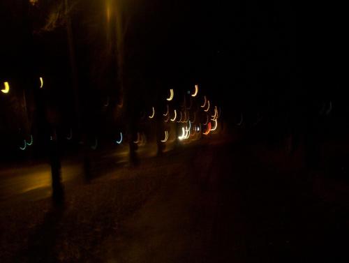 Puławy ^^ 4 listopada 2007 #puławy