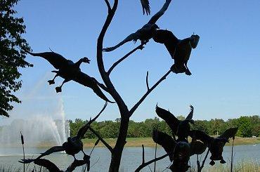 ptaki-ale nieprawdziwe:) #OgrodBotanicznyChicago