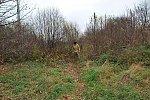 http://images33.fotosik.pl/406/b3abc795af09ab8dm.jpg