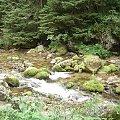#Tatry #przyroda #potok #woda #strumień #góry #natura #widoki