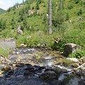 #Tatry #natura #strumień #potok #woda #góry #widoki