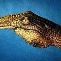 #krokodyl #ręka #malarstwo